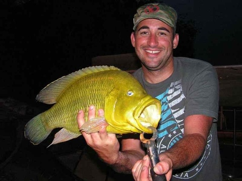 Angling, Caprivi Houseboats Safaris Lodge